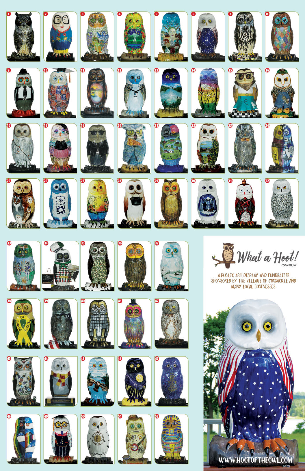 What a Hoot! brochure owls coxsackie